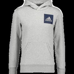 Adidas Ess Logo Po Hood Huppari