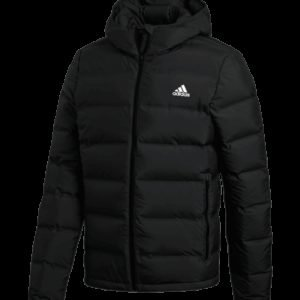 Adidas Helionic Ho Jacket Untuvatakki