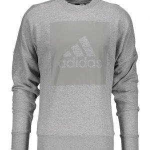 Adidas Sid Brandedcrew Collegepaita