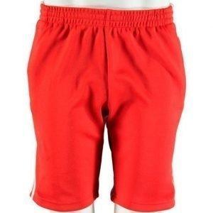 Adidas Sst Shorts Shortsit