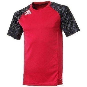 Adidas T-shirt Pre Cl Tee D79984 lyhythihainen t-paita
