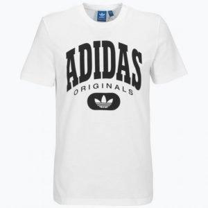 Adidas Torsion Tee T-Paita