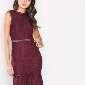 Ax Paris Lace Dress Kotelomekko Plum