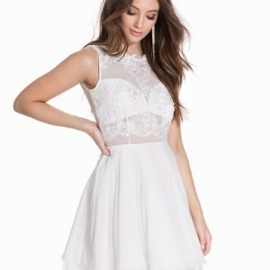 Ax Paris Sleeveless Lace Skater Dress Skater Mekko Cream