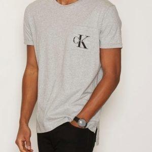 Calvin Klein Jeans Bolan True Icon CN Tee SS T-paita Light Grey