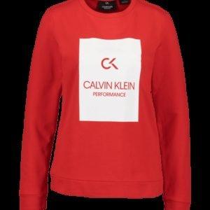 Calvin Klein Pullover Crew Collegepaita