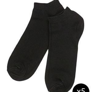 Claudio 'Sneaker' nilkkasukat 5 pakk