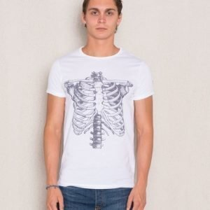 Dead Legacy Ribcage White