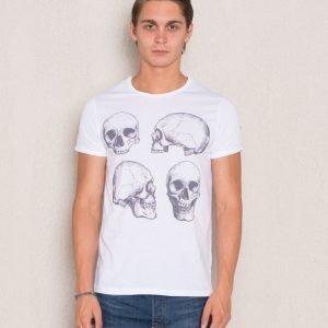Dead Legacy Skulls 4 Angle White