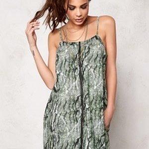 Desires Doxy 2 Dress 3516 Ambrosia