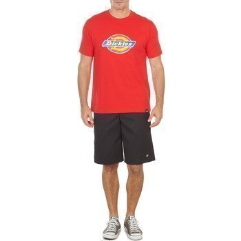 Dickies 13 MULTI POCKET bermuda shortsit