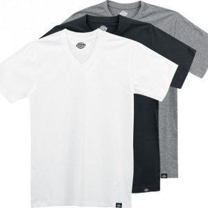 Dickies Multi Colour V Neck T-paita