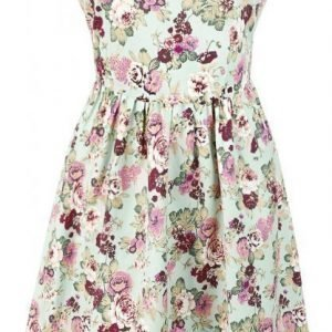 Dolly And Dotty Cindy Sassy Floral Swing Vintage Dress Mekko