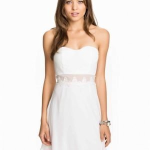 Elise Ryan Bandeau Waist Lace Trim Skater Dress