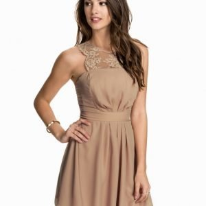 Elise Ryan Chiffon Skater Dress Svart