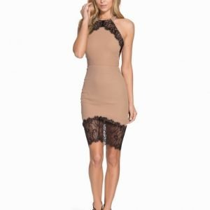 Elise Ryan Halter Crepe Lace Dress