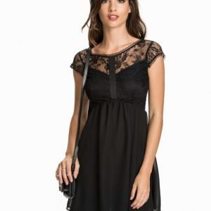 Elise Ryan Lace Chiffon Cap Sleeve Skater Dress
