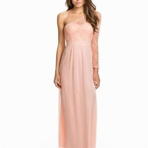Elise Ryan One Shoulder Lace Sleeve Chiffon Maxi Dress