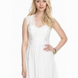 Elise Ryan Scalloped Lace Chiffon Dress