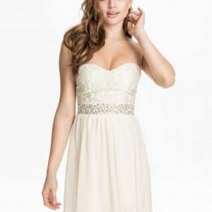 Elise Ryan Silver Lace Bandeau Dress