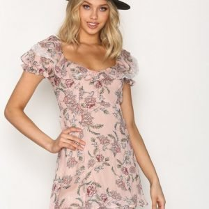 For Love & Lemons Bee Balm Mini Dress Skater Mekko Pink
