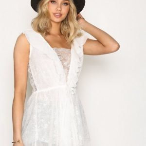 For Love & Lemons Stardust Lace Dress Skater Mekko White