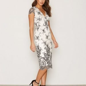 French Connection Ss V Neck Lace Dress Skater Mekko Black