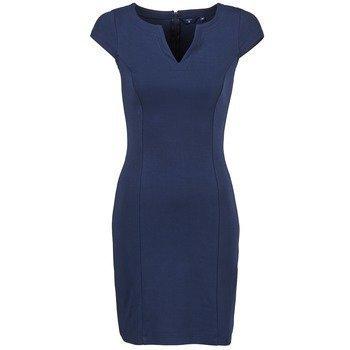 Gant PENCIL DRESS lyhyt mekko - Vaatekauppa24.fi 775fd75f1d