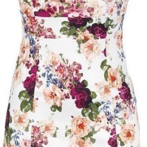 H&R London Vintage Rose Dress Mekko