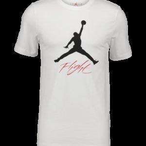 Jordan Jumpman Flight Hbr Tee T-Paita