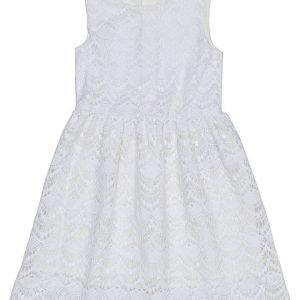 LMTD Limited Marita mekko