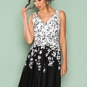 Lauren Ralph Lauren Marietta Sleeveless Dress Skater Mekko Black Grey