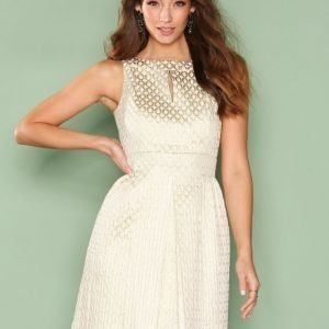 Lauren Ralph Lauren Para Other Dress Skater Mekko Ivory