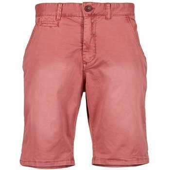 Lee Cooper NASH bermuda shortsit
