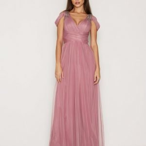 Little Mistress Mesh Maxi Dress W / T Silver Details Maksimekko Rose