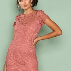 Love Triangle Amalfi Lace Mini Dress Kotelomekko Dark Rose