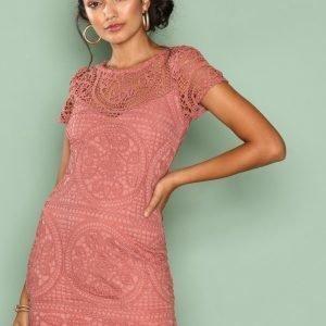 Love Triangle Amalfi Lace Mini Dress Kotelomekko Dark Rose
