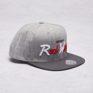Mitchell & Ness Detroit Redwings Snapback Grey
