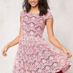 Model Behaviour Freja Dress Dark red / Pink