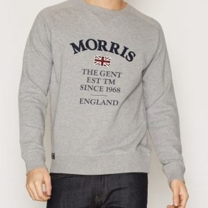 Morris William Sweatshirt Pusero Grey