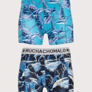 Muchachomalo Shark 2-Pack Boxer Bokserit Multicolor