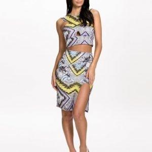 NLY One Animal Print Skirt