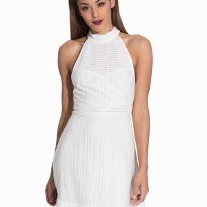 NLY Trend Block Skater Dress