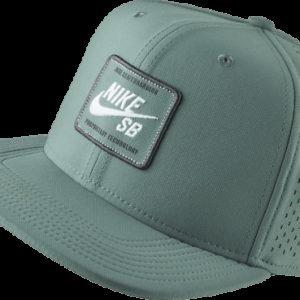 Nike Sb Arobill Pro Cap 2.0 Lippis