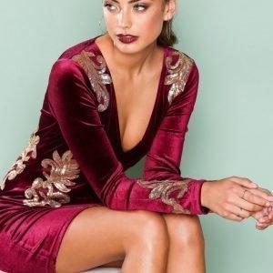 Nly One Decore Velvet Dress Kotelomekko Burgundy