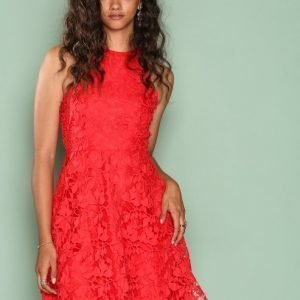 Nly One Scallop Lace Dress Skater Mekko Punainen