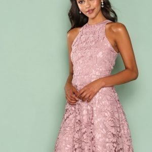 Nly One Scallop Lace Dress Skater Mekko Violetti