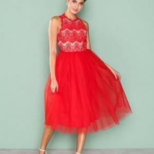 Nly One Tulle Lace Dress Skater Mekko Punainen