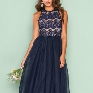 Nly One Tulle Lace Dress Skater Mekko Tummansininen