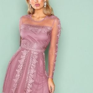 Nly Trend Expose Me Dress Skater Mekko Dark Rose